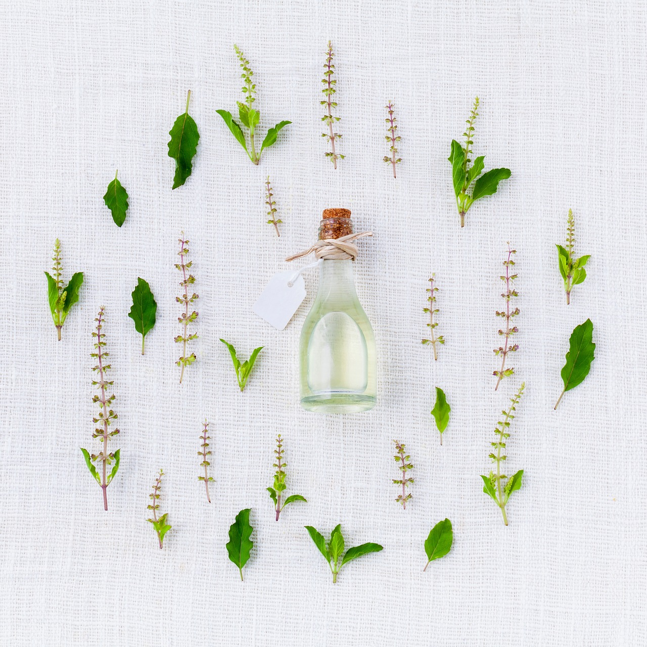 Properties of Thyme Oil