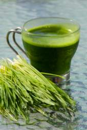 wheatgrass is great for natural body detox